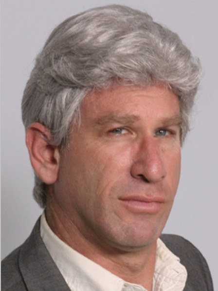 Sliver Short Lace Front Wigs For Men