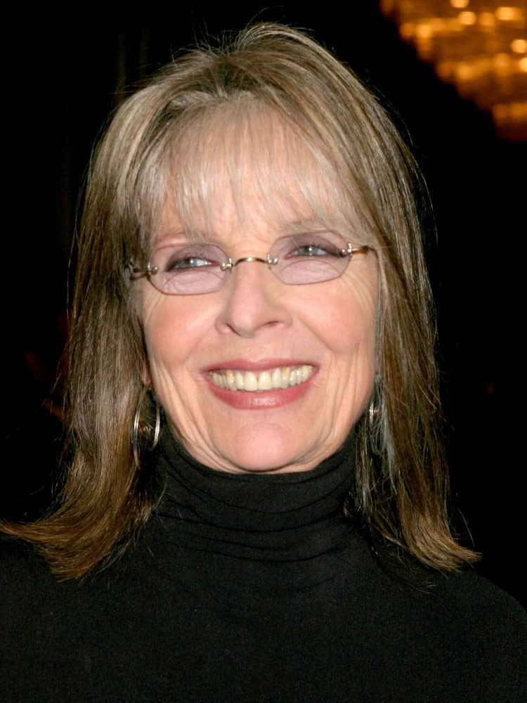 Diane Keaton's Shoulder Length Gray Hair Wig